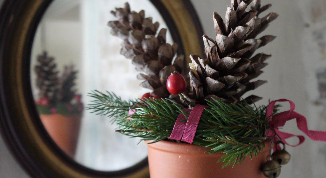 Berühmt Weihnachtsdekoration aus dem Garten | altes-gartenwissen.de #RV_31