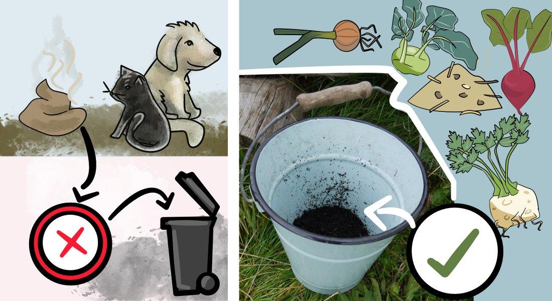 zoonose katzenkot und hundekot auf den kompost geben wo der unterschied zum mist liegt. Black Bedroom Furniture Sets. Home Design Ideas